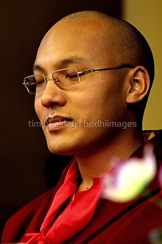 His Holiness 17th Karmapa   Orgyen Trinlay Dorje  by tim buckley   bodhiimages