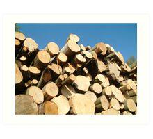 Log Pile 2 Art Print