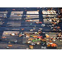 The Bridge of Autumn Photographic Print