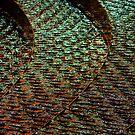 Water colour by Alexander Meysztowicz-Howen