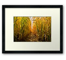 Barley-High Framed Print