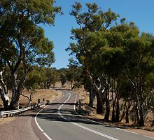 The Road, South Australia by mellychan
