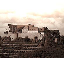 Ebernburg by TriciaDanby