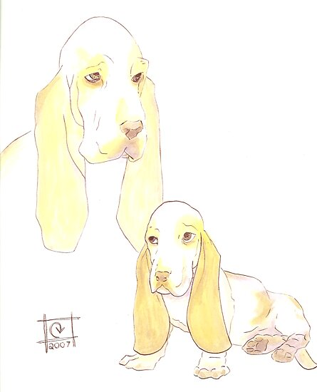 Lemon Basset Hounds by Carie Varner