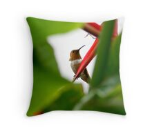 Heliconia Hummer Throw Pillow