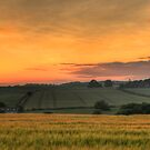 Sunset over the fields by bubblebat