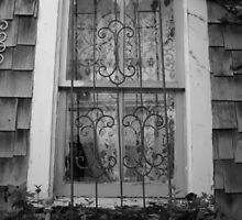 Wickford Window by risailor