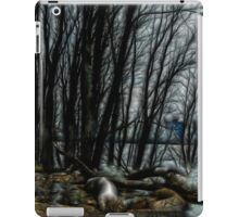 Along the Riverside iPad Case/Skin