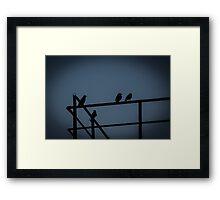 A Few Irish Birds Framed Print