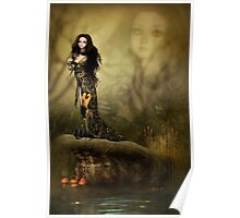 The Reflecting Pond Poster