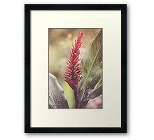 Dream Flower 28 Framed Print