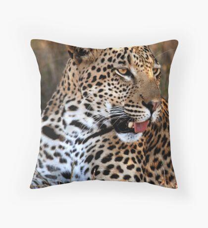 Close Encounters II Throw Pillow