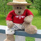 Bear's Lazy Summer Days by L J Fraser