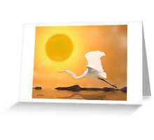 Egret Flying Into Sun Greeting Card