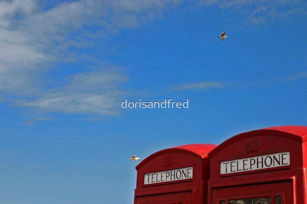 calling mr blue sky! by dorisandfred