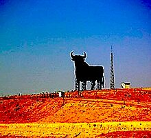 El toro by CasaArchidona