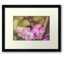 Dream Flower 31 Framed Print