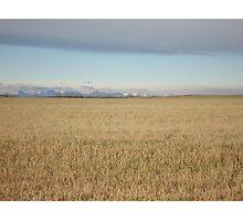 Alberta Landscape Photographic Print