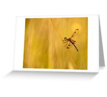 Dragonfly Pole Dance ~ Ginkelmier Inspired Greeting Card