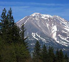 Mt. Shasta, California. by Ann  Van Breemen