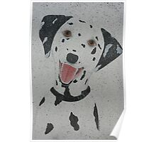 Dalmation Poster