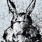 Bunny by Susan Grissom