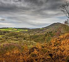 Wrekin View by mlphoto