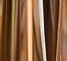 Blades by MichelleOkane