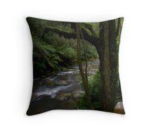 Triplet Falls River Throw Pillow