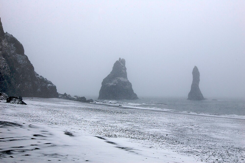 Beach in a Snowstorm by Alyssa Dionne
