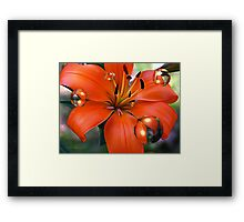 WOW Me Red Framed Print