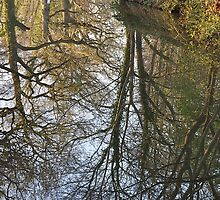 Llangollen Canal Narrowboat by Snogable