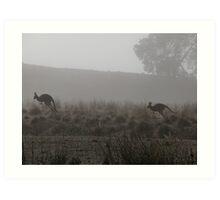 Roos on the Run Art Print