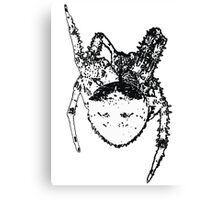 Cat Face Spider  Canvas Print