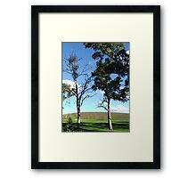 Vineyard View Framed Print