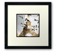 PARIS 1 Framed Print