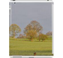 English Landscape iPad Case/Skin