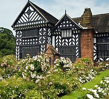Speke Hall by Steve  Liptrot