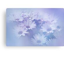Dreamy Daisies Canvas Print