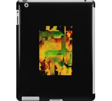 In the Temple of the Sun iPad Case/Skin