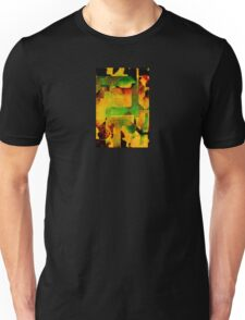 In the Temple of the Sun Unisex T-Shirt