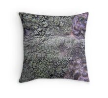 Developing Organisms Throw Pillow