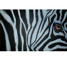 Zebra Eye Photographic Print