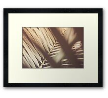 Dream Flower 46 Framed Print