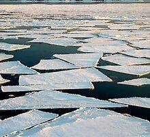 Antarctic Jigsaw puzzle by Adam Wightman