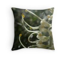 Grevillea 'Moonlight' Throw Pillow