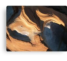 Natural sculpture 5 Canvas Print