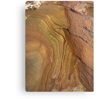 Natural sculpture 12 Canvas Print