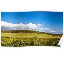 clouds in the countryside Poster