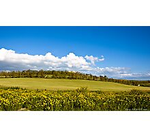 clouds in the countryside Photographic Print